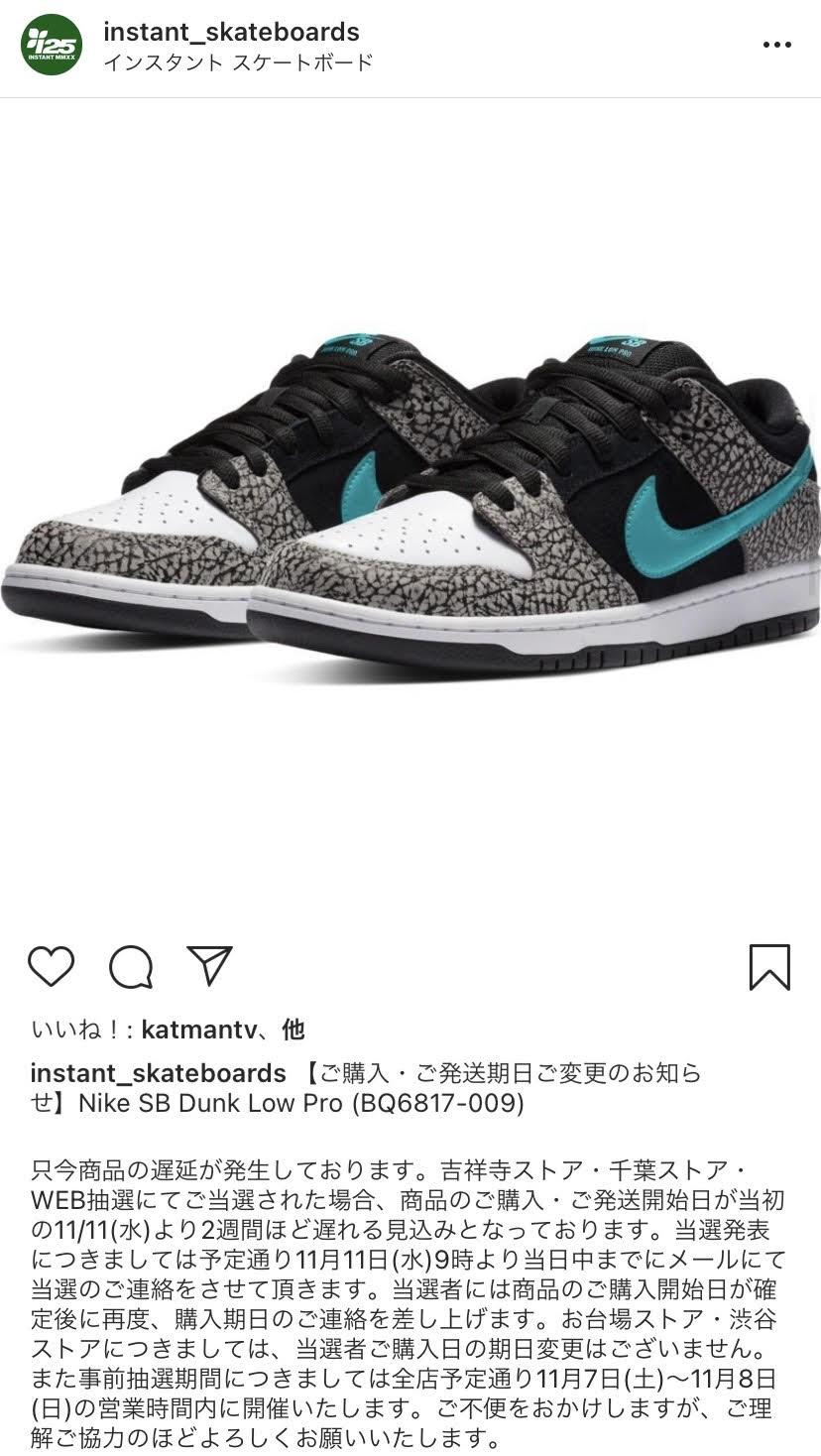 ナイキ SB ダンク ロー エレファント Nike SB Dunk Low Elephant BQ6817-009 instant skateboard