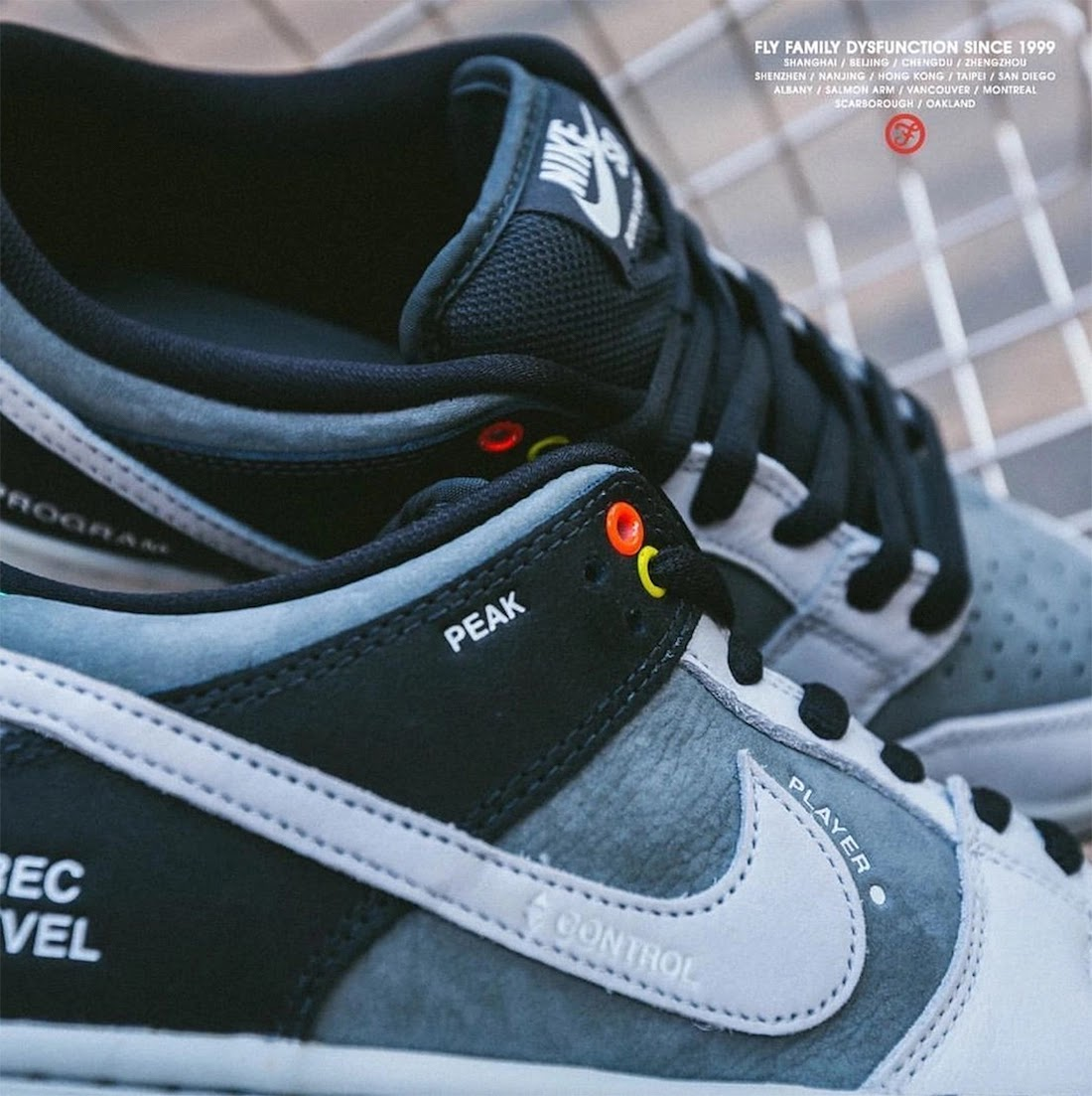 """ナイキ SB ダンク ロー """"カムコーダー"""" Nike-SB-Dunk-Low-Camcorder-CV1659-001-look-3"""