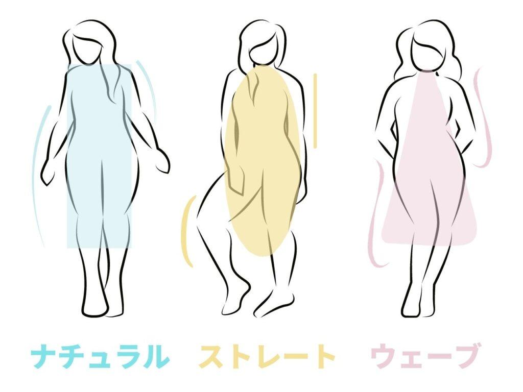 骨格タイプ 3種類